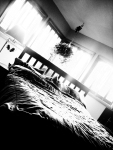 BedLight-B&W