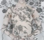 Wallpaper-Carnation