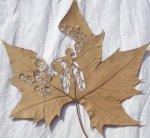 Lorenzo-Duran-leaf-art-74